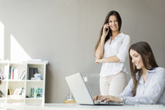 Young women in the office Royalty Free Stock Photo