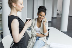 Young women in the office Royalty Free Stock Images