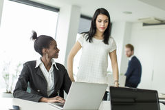 Young women in the office Royalty Free Stock Photos