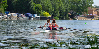 Young women in Pairs Sculling on the river Ouse at St Neots. ST NEOTS, CAMBRIDGESHIRE, ENGLAND - JULY 23, 2016: Young women in Pairs Sculling on the river Ouse Royalty Free Stock Image