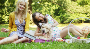 Young women playing with dog Royalty Free Stock Photos