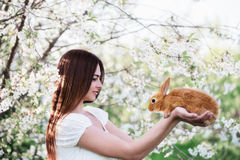Young women with rabbit Royalty Free Stock Photo