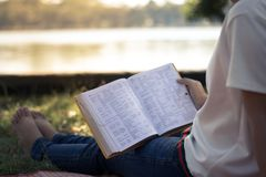 Young women reading book in park, concept in knowledge and educa. Tion Royalty Free Stock Photography