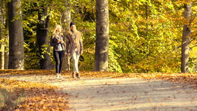 Young women relaxing with friend at park stock footage