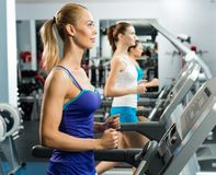 Young women running on a treadmill Royalty Free Stock Photos