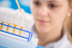 Young women science professional pipetting solution into the glass test Royalty Free Stock Image
