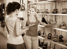 Young women selecting shoes. Ttwo glad young women selecting the shoes and chatting among shelves Royalty Free Stock Image