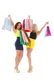 Young women with shopping bags. Royalty Free Stock Image