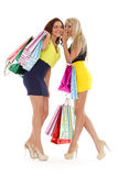 Young women with shopping bags. Stock Photo