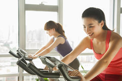 Young women on stationary bikes exercising in the gym Royalty Free Stock Photo