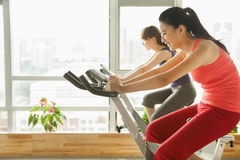 Young women on stationary bikes exercising in the gym Stock Photography