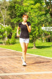 Young women with step exercise by jogging Royalty Free Stock Photo