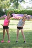 Young women stretching in park Stock Images