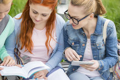 Young women studying together in park Royalty Free Stock Photography