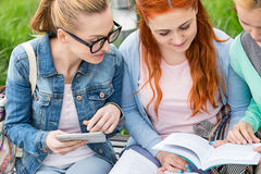 Young women studying together in park Stock Photo