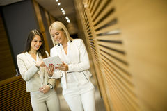 Young women with tablet in office Royalty Free Stock Image