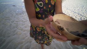 Turtle sanctuary. Young women take wooden bowl with newborn turtle in our hand,close up hand and turtle in wooden bowl, turtle  sanctuary hatchery located on the stock video footage
