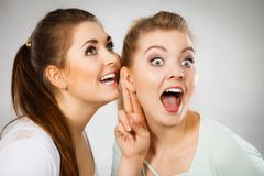 Two women telling gossip Royalty Free Stock Images