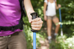 Young women trekking in forest and holding stick. Young female friends walking in woods. Closeup of hand holding stick stock image