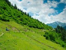 Young women trekking in Svaneti,. Young hikers trekking in Svaneti, Georgia Stock Photo