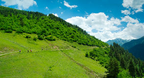 Young women trekking in Svaneti, Stock Image