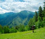 Young women trekking in Svaneti,. Male hiker trekking in Svaneti, Georgia Royalty Free Stock Images