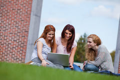 Young women using a laptop. While sitting on the lawn Royalty Free Stock Photos
