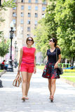 Young women walking in the summer city. Two young women walking in the summer city Royalty Free Stock Image