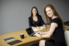Young women working in the office Royalty Free Stock Photography