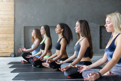 Young women in yoga class, relax meditation pose Royalty Free Stock Image