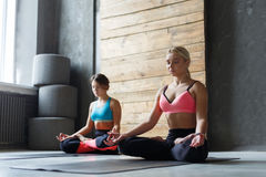 Young women in yoga class, relax meditation pose Stock Photography