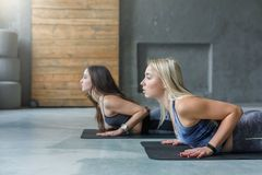 Young women in yoga class, snake pose stretching stock photos