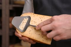 Young worker slicing cheese. In shop Stock Images