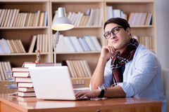 The young writer working in the library Stock Photos