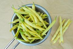 Young yellow string beans collected in a ladle. Young yellow string beans are collected in a metal ladle and a few pods lie side by side on paper stock photography