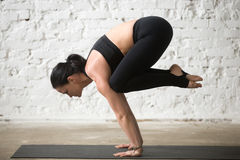 Young yogi attractive woman in Bakasana pose, white loft backgro Stock Photography