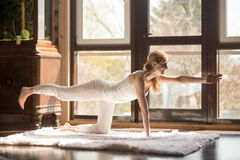 Young yogi attractive woman in Bird dog pose, home interior. Young yogi attractive woman practicing yoga concept, standing in Donkey Kick exercise, Bird dog pose royalty free stock photo