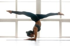 Young yogi attractive woman practicing yoga, doing Pincha Mayura stock image