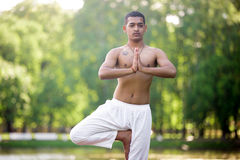 Young yogi in tree pose. Portrait of serene attractive Indian young man in white linen clothes working out on river bank in park, standing in Vrikshasana ( Stock Photography