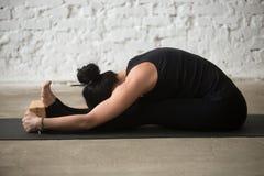 Young yogi woman in paschimottanasana pose with block, loft back Royalty Free Stock Images