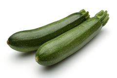 Young Zucchini Stock Photography