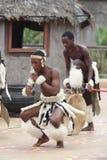 Young Zulu Dancer stock photography