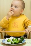Youngster eating. A portrait of a hungry young toddler with a bib in a high chair, hand-feeding himself from a plate of food in front of him Stock Image