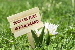 Your culture is your brand. On wooden sign in garden with white spring flower Stock Photography