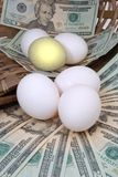 Your eggs Royalty Free Stock Photo