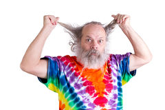 Your Hair Driving you Nuts Too Royalty Free Stock Photos