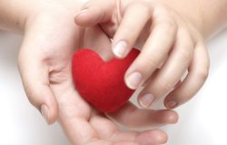Your heart in my hands! Royalty Free Stock Image
