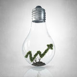 Your income growth. Glass light bulb and green growing graph inside Royalty Free Stock Photos