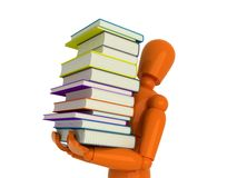 Your library. Royalty Free Stock Photo
