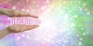 Free Your Life Force Is In Your Hands Royalty Free Stock Photo - 59571105